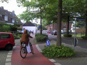 Hohegrabenweg / Kanzlei: Anders als auf der Dorfstraße müssen Radfahrer hier auf dem viel zu schmalen Gehweg fahren, und das sogar im Gegenverkehr. Wer soll das verstehen?